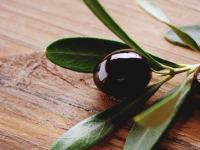 Оливки или маслины: что полезней?