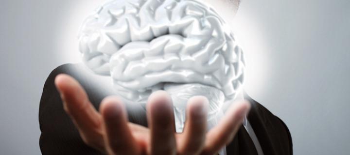 30 лучших продуктов для мозга